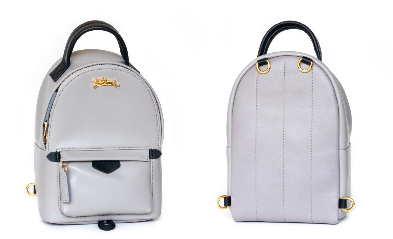 Longchamp 龙骧托特包变成 Palm Spring mini 后背包